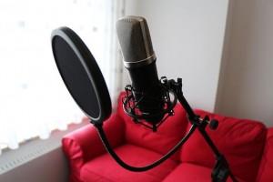 Mikrofonspinne und Popschutz